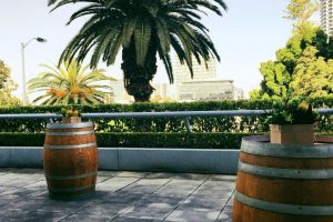 Wine Barrel 1